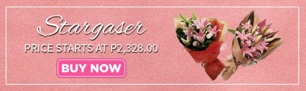 Stargazer flower delivery in angeles city