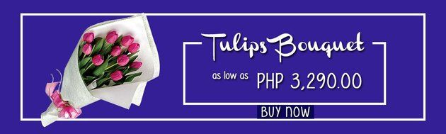 Affordable Tulips Bouquets