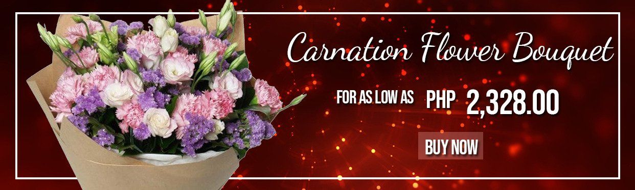 Carnation Flower Bouquets
