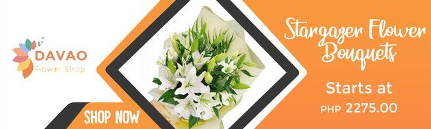 Stargazer Flowers at Affordable Prices