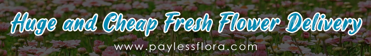 Huge and Cheap Fresh Flower Delivery