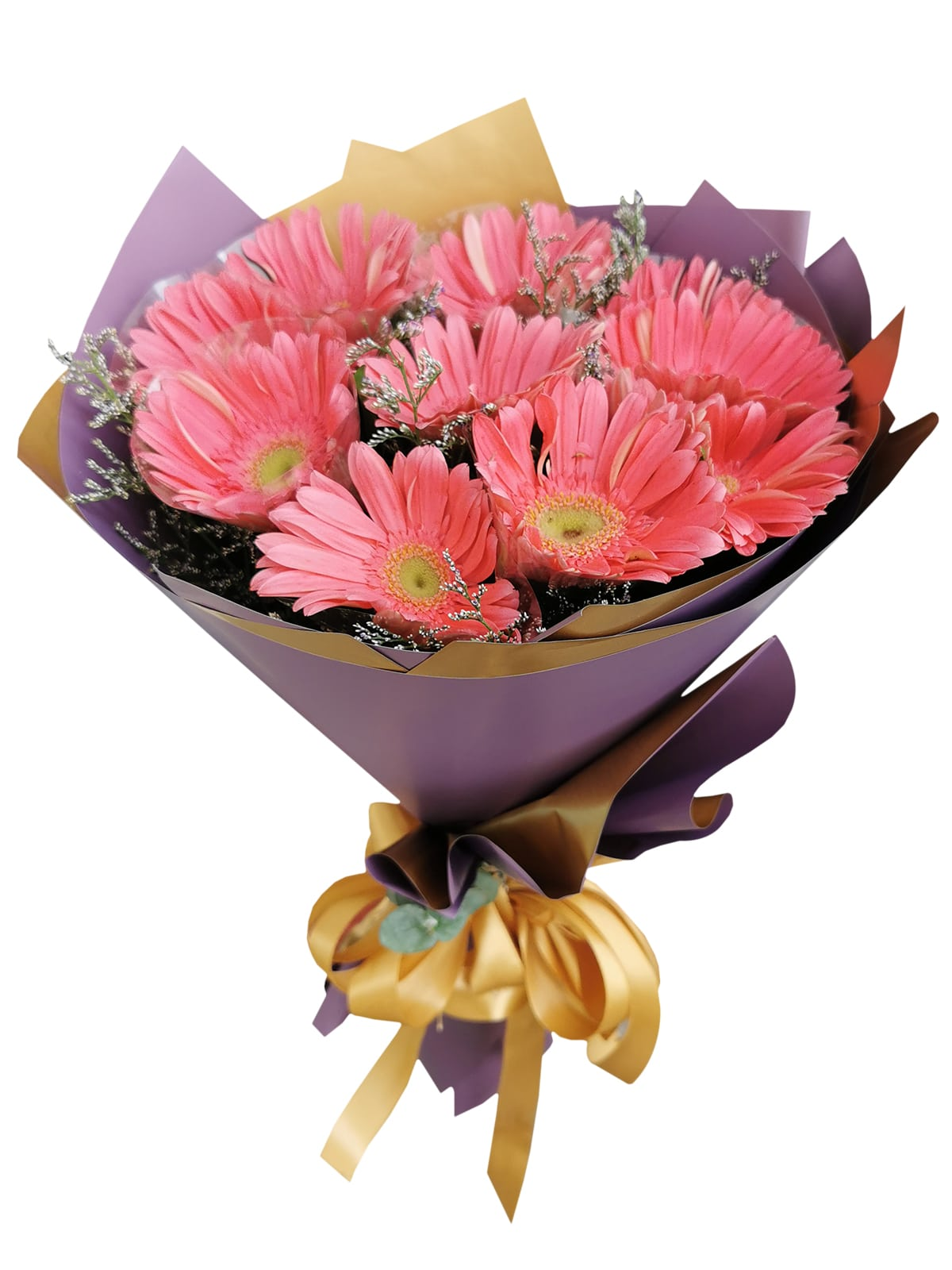 10 Fuchsia Pink Gerbera Korean Purple Gold