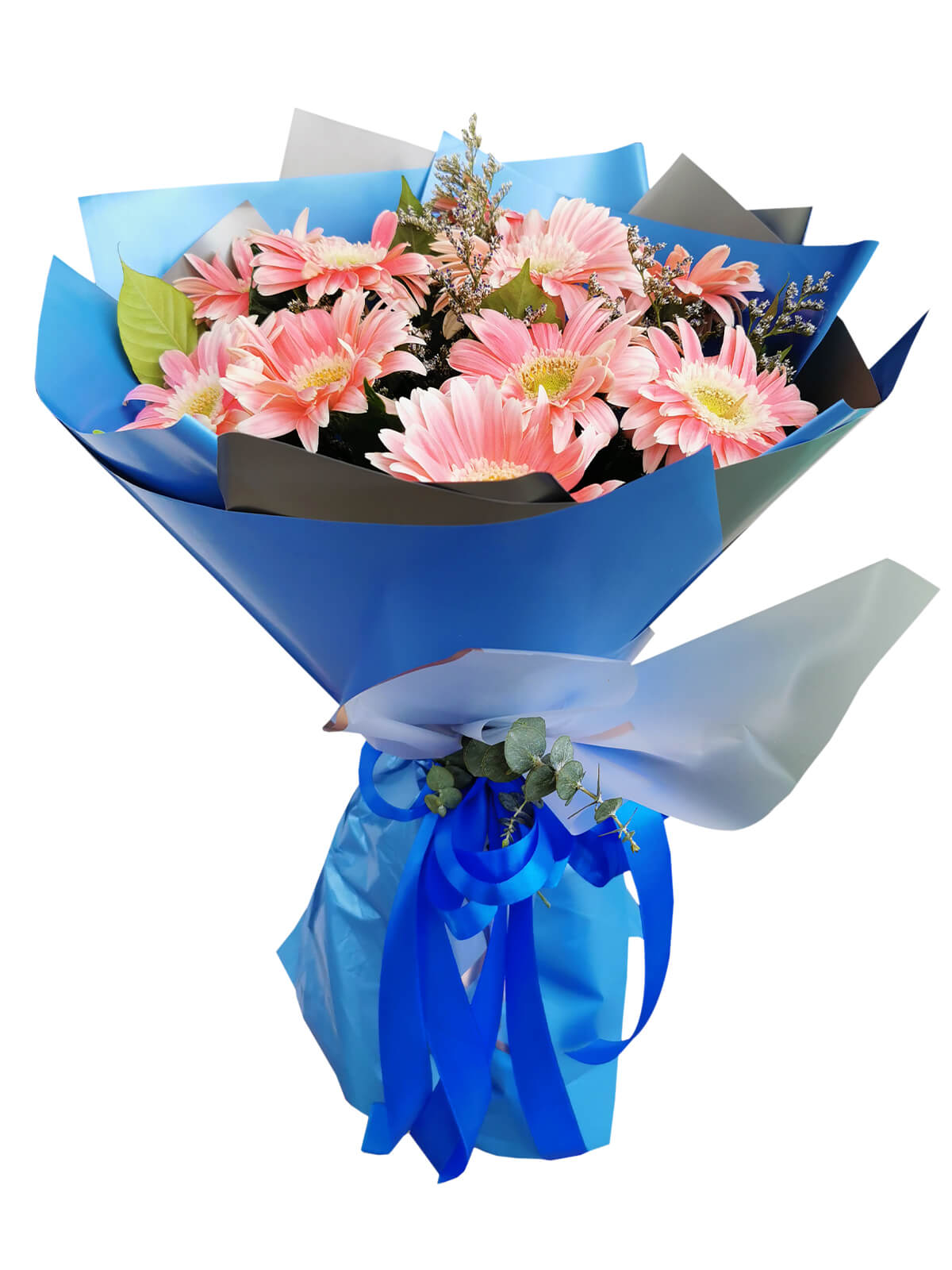 10 PINK Gerbera Korean Blue Silver
