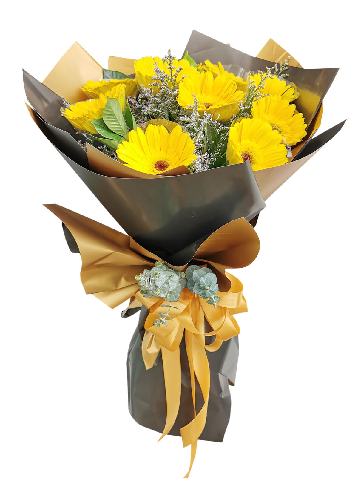 10 YELLOW Gerbera Korean Black Gold