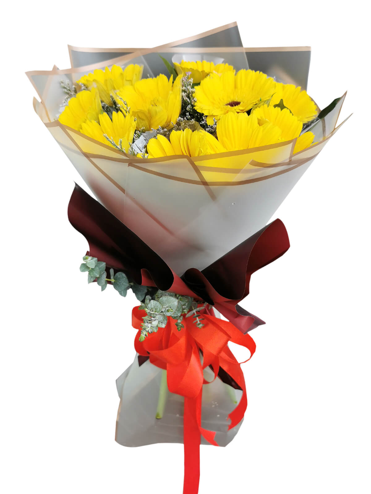 YELLOW Gerbera Korean White-Maroon