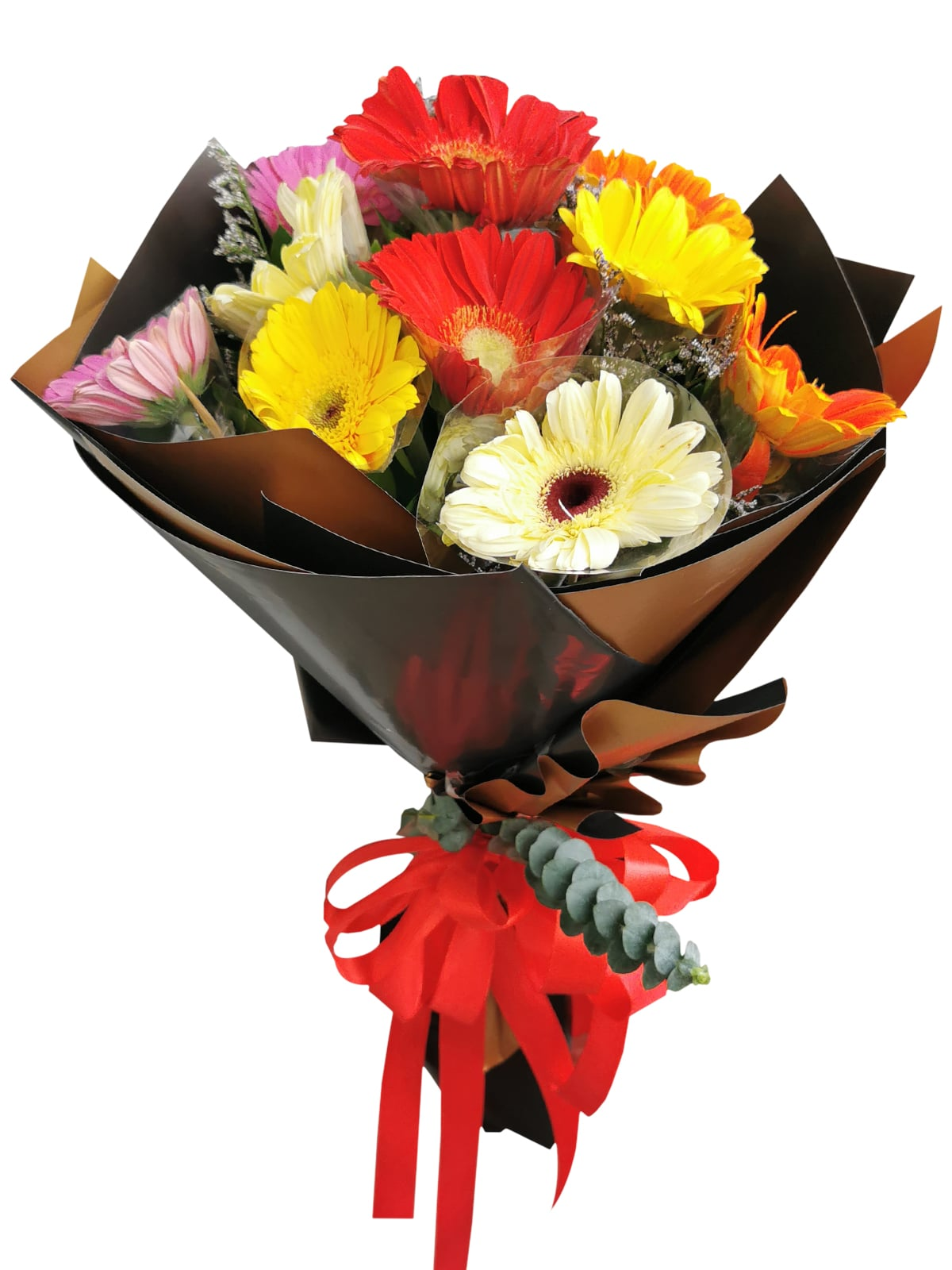 MIX Gerbera Korean Black Gold