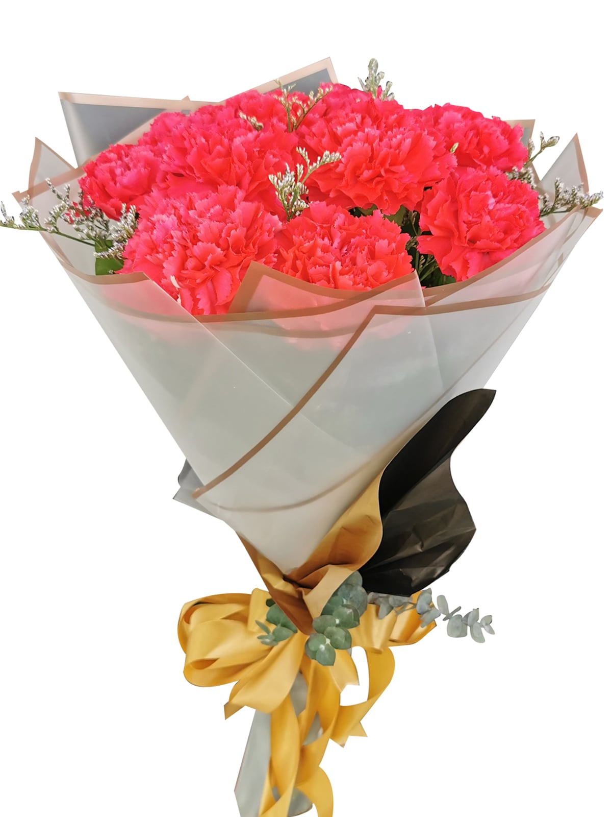 Carnation Fuchsia Pink Korean White bg