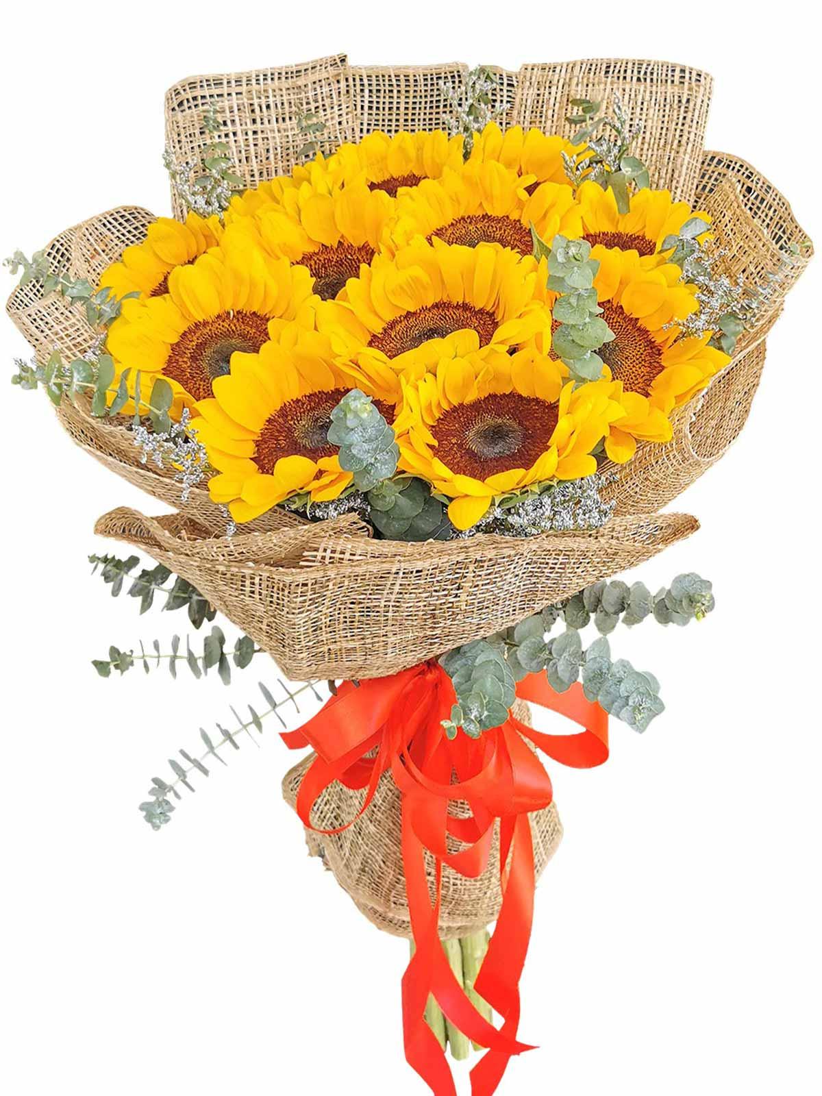 Sunflower burlap ph 12