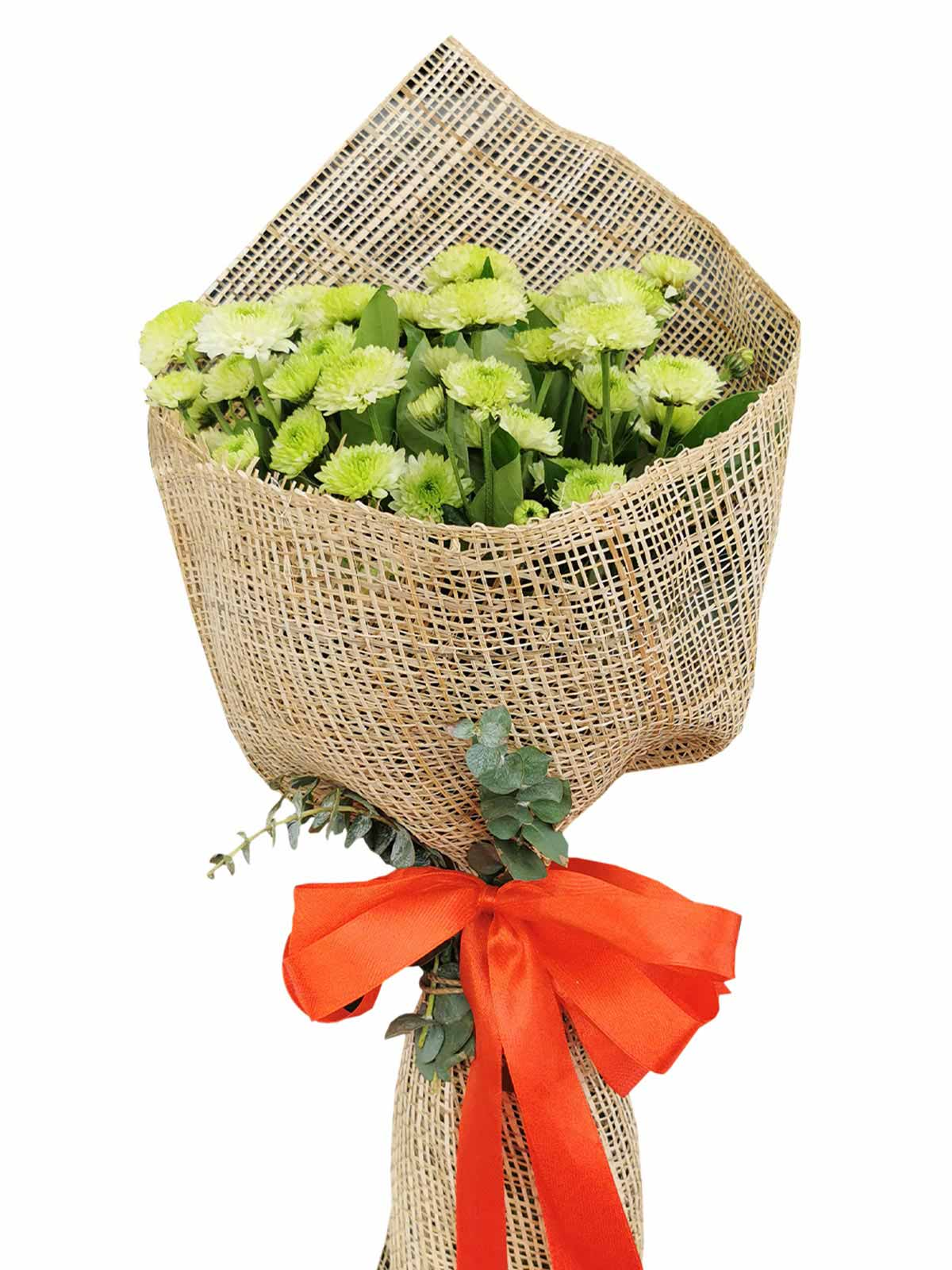 Green Mums 12 Burlap PH