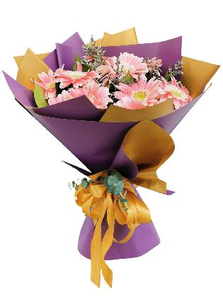 10 PINK Gerbera Korean Purple Gold