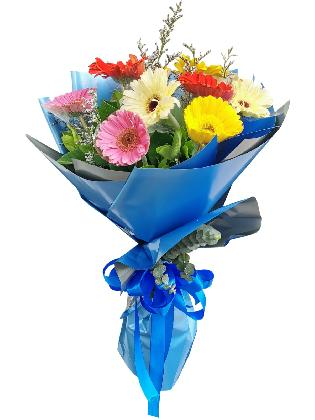 MIX Gerbera Korean Blue Silver