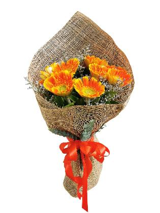 ORANGE Gerbera Burlap ph