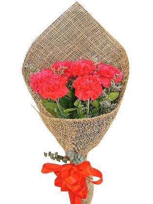 Carnation Fuchsia Pink Burlap ph