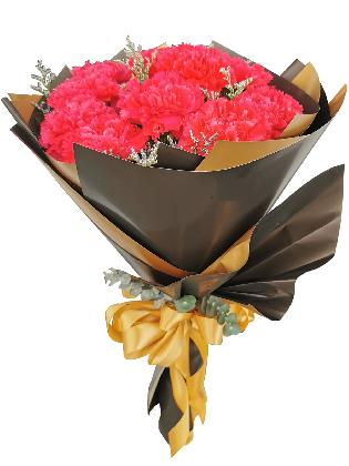 Carnation Fuchsia Pink Korean Black Gold