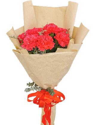 Carnation Fuchsia Pink Kraft Paper