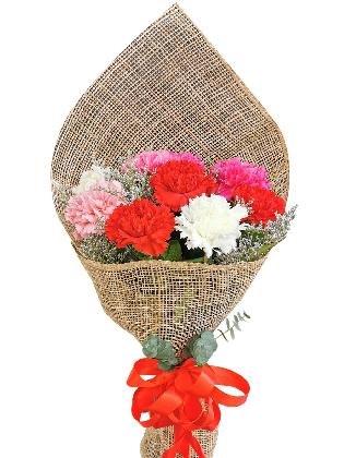 MIX Carnation Burlap ph