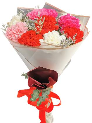 MIX Carnation Korean White Maroon