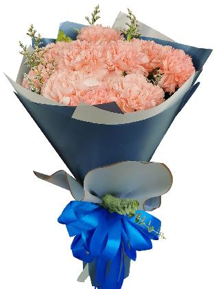 PINK Carnation Korean Blue Silver