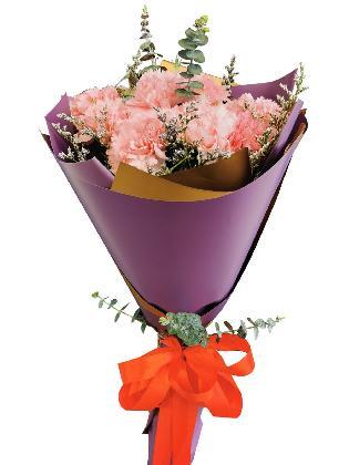 PINK Carnation Korean Purple Gold