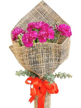 PURPLE Carnation Burlap ph