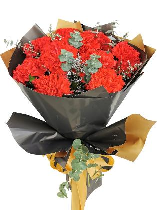 RED Carnation Korean Black Gold