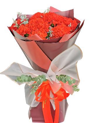 RED Carnation Korean Maroon White