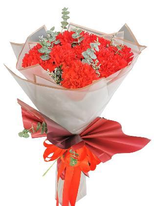 RED Carnation Korean White Maroon
