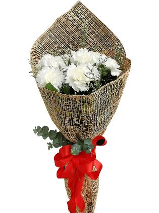WHITE Carnation Burlap ph