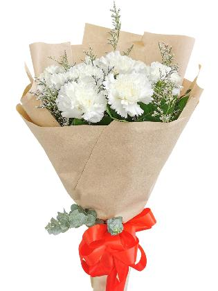 WHITE Carnation Kraft Paper