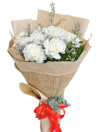 WHITE Carnation Kraft Jute
