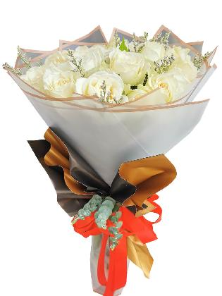 289 White Rose 24 BG