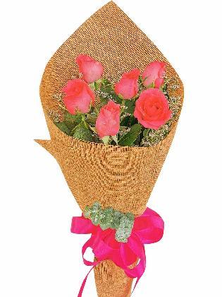 Pink Roses 6 Burlap CH