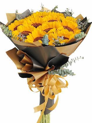 Sunflower Black Gold