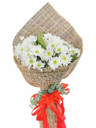 White Mums 12 Burlap PH