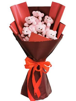 Pink Bears 6 Maroon