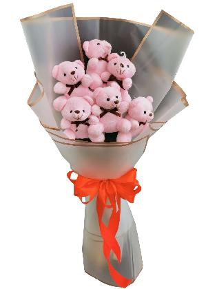 Pink Bears 6 White