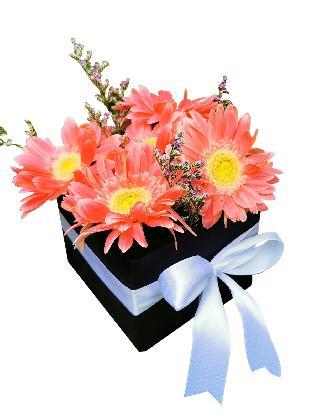 50 Pink Gerbera Love Box 002