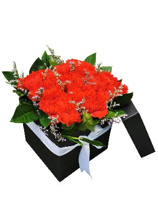 120 Red Carnation Love Box 001