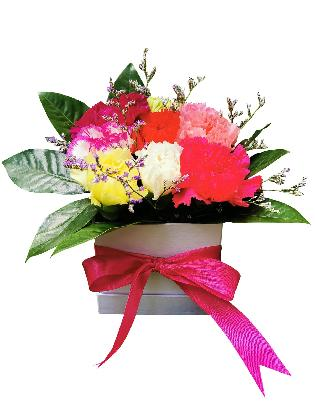 122 Mixed Carnations Love Box 001