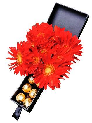 Gerbera Special Love Box 002
